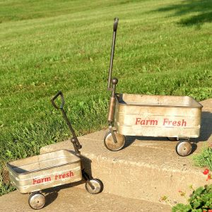 Set of 2 Old Style Galvanized Farm Carts with Moving Wheels and Handle