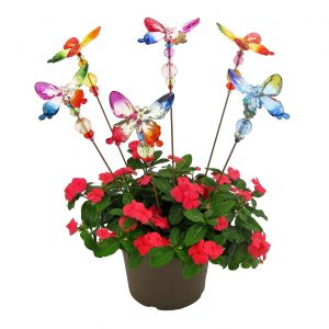 Set of 6 Five Tone Acrylic Butterfly Pot Stake